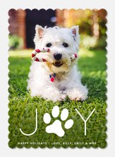Pawfect Joy -  Dog Christmas Cards