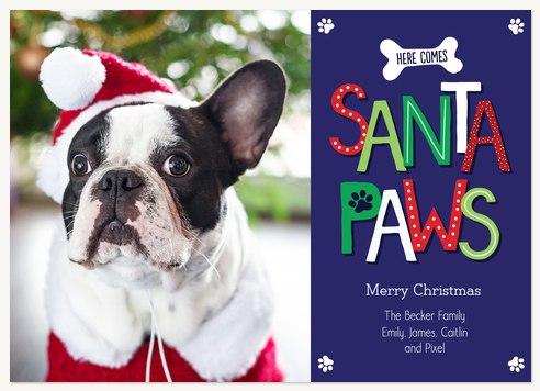 dog christmas cards merry santa paws