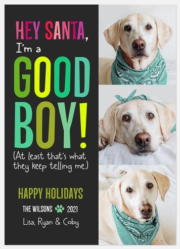 Good Boy Holiday Photo Cards