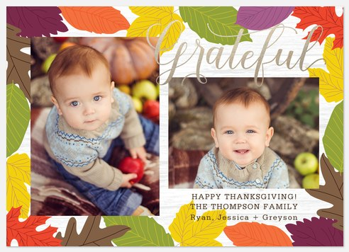 Vivid Fall Thanksgiving Cards