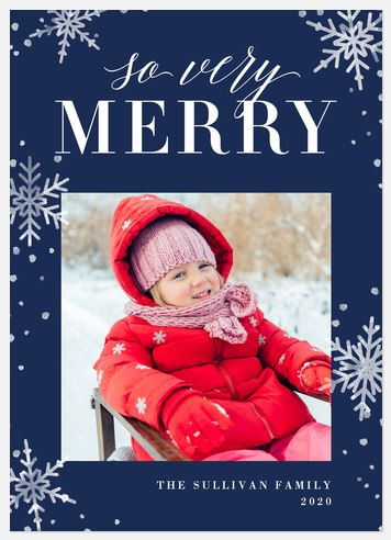 Wintery Snow Holiday Photo Cards