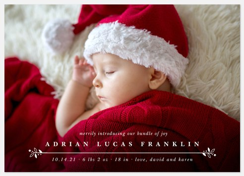 Merry Welcome Holiday Photo Cards