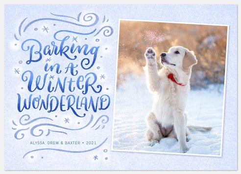 Winter Wonder Holiday Photo Cards