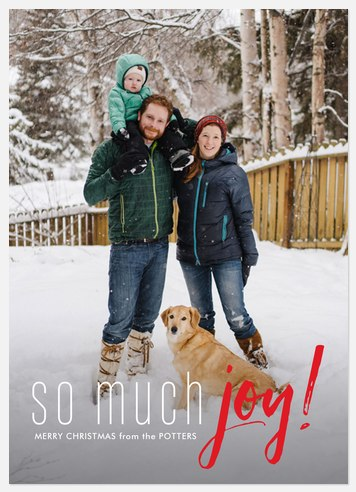 Endless Joy  Holiday Photo Cards